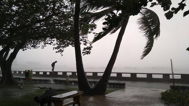 Nhiều ngư dân Vũng Tàu liều lĩnh ra biển kiểm tra tài sản giữa cơn bão số 9 quét qua - Ảnh 8.