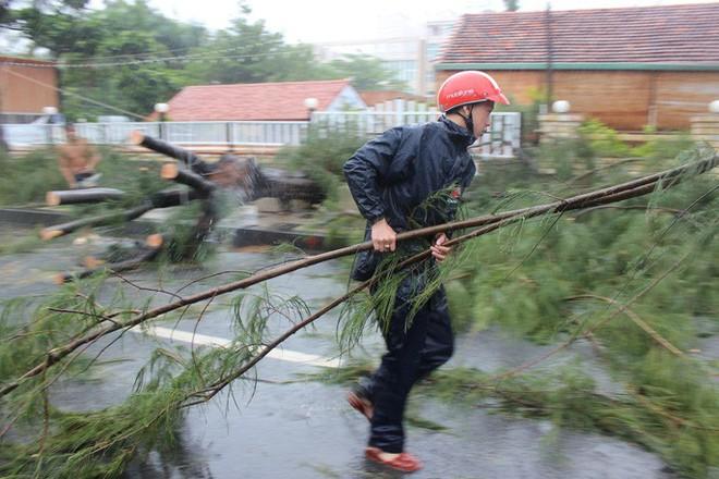 Gió mạnh cấp 8 đổ bộ vào Vũng Tàu, cây xanh gãy đổ hàng loạt - Ảnh 6.