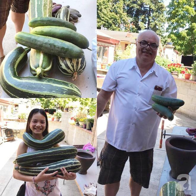 Để chiều lòng vợ, chồng Mỹ thiết kế khu vườn trồng đủ các loại hoa và rau quả Việt để vợ đỡ nhớ quê hương - Ảnh 37.