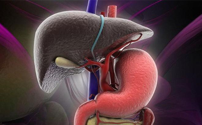 """3 thời điểm """"vàng"""" để chăm sóc dạ dày, tim và mạch máu: Nếu muốn khỏe hãy áp dụng ngay!"""