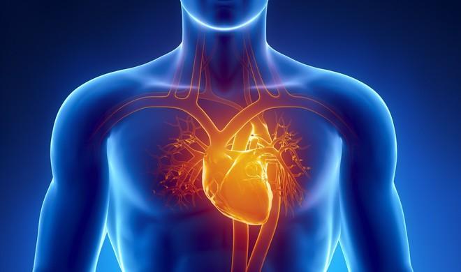 3 thời điểm vàng để chăm sóc dạ dày, tim và mạch máu: Nếu muốn khỏe hãy áp dụng ngay! - Ảnh 3.