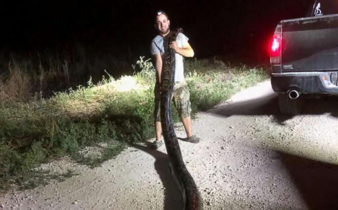 24h qua ảnh: Thợ săn bắt được trăn khổng lồ có kích cỡ kỷ lục ở Mỹ