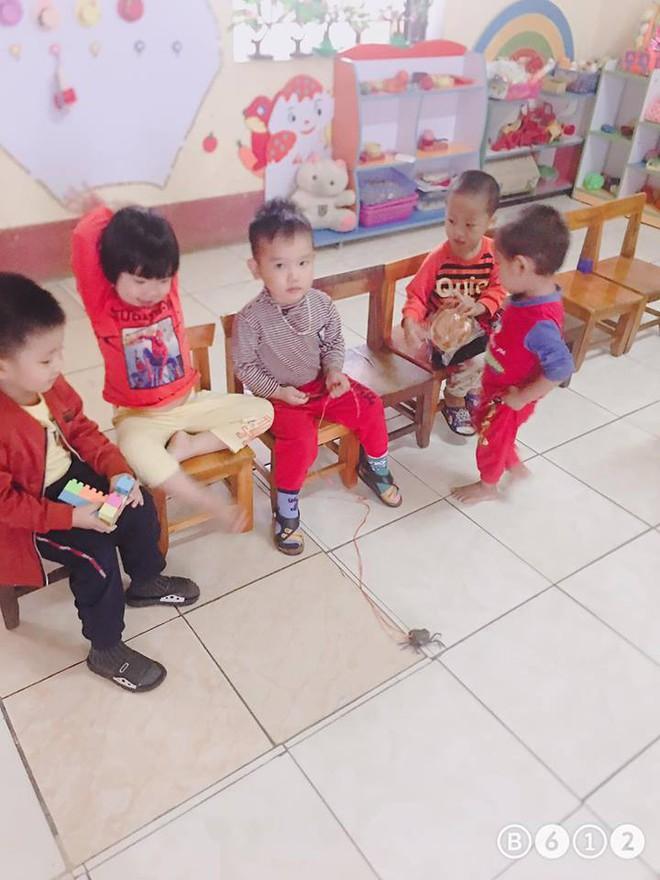Buộc dây, mang 'pet yêu' đến lớp, cậu bé 3 tuổi khiến cô giáo giật mình bối rối - ảnh 1