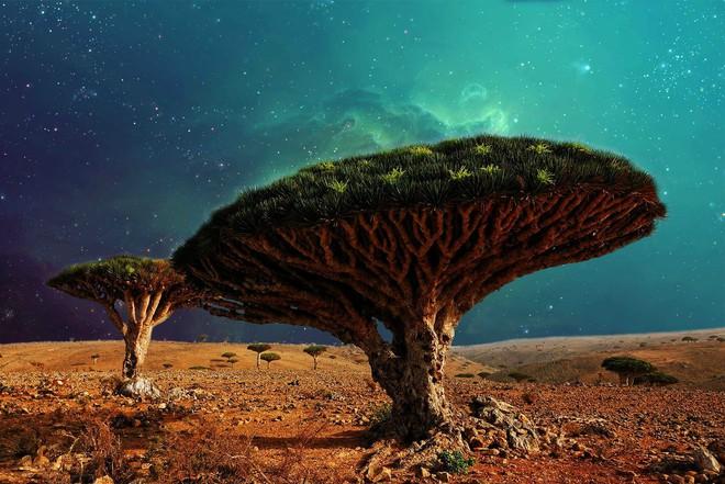 Địa ngục sống trên Trái Đất: Nơi 4000 con rắn độc xâm chiếm đảo hoang - Ảnh 4.