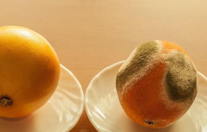 Bác sĩ tiết lộ 5 món ăn khiến bạn lão hóa siêu tốc: Ăn sướng miệng, tuổi già đến nhanh - Ảnh 4.