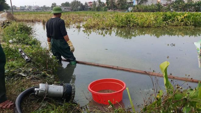 Vụ hàng nghìn lít dầu tràn ở Thanh Hóa: Dân làng đổ xô mang can ra hớt dầu - Ảnh 2.