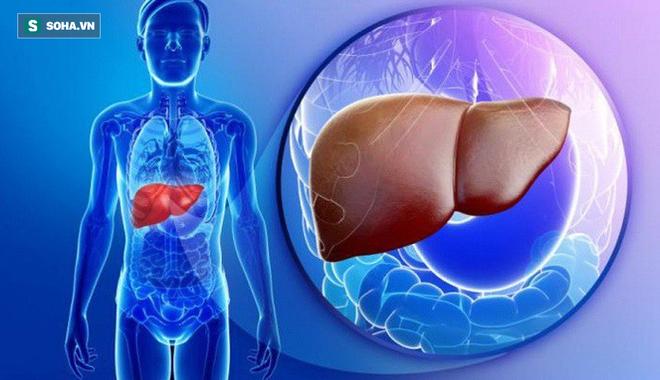Tại sao đa số người ung thư gan đều tử vong: Biết sớm điều này sẽ vượt qua cửa tử dễ hơn - Ảnh 2.