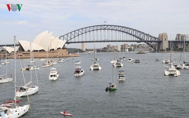 Sydney: Hàng trăm ngàn người xếp hàng lấy chỗ xem pháo hoa năm mới - Ảnh 7.