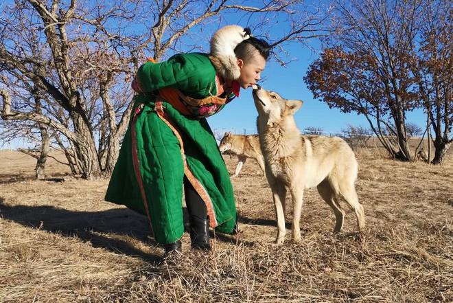 Cô gái Mông Cổ với dàn thú cưng độc 8 con sói, 3 bạn trai đều đòi chia tay vì sợ cãi nàng sẽ bị ăn thịt - Ảnh 1.