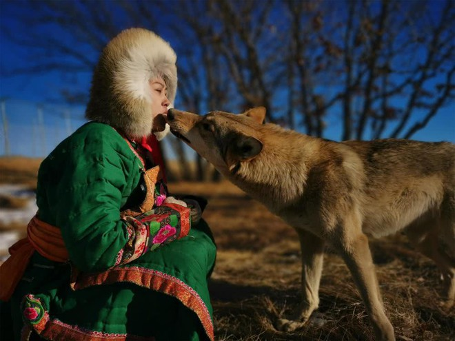 Cô gái Mông Cổ với dàn thú cưng độc 8 con sói, 3 bạn trai đều đòi chia tay vì sợ cãi nàng sẽ bị ăn thịt - Ảnh 2.