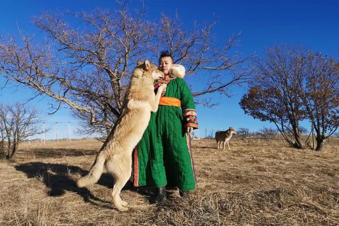 Cô gái Mông Cổ với dàn thú cưng độc 8 con sói, 3 bạn trai đều đòi chia tay vì sợ cãi nàng sẽ bị ăn thịt - Ảnh 4.
