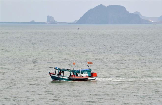 Nghề nuôi cá bạc tỷ ở Sơn Hải - Ảnh 2.