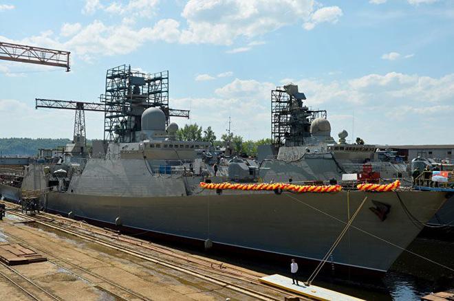 Sputnik: Việt Nam quan tâm tàu hộ vệ Dự án 20385 tối tân của Nga, đóng thêm Molniya 1241.8 - Ảnh 1.