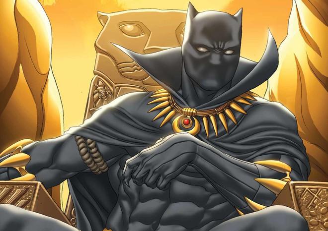 Ai cũng đang bàn tán về Black Panther, vậy chính xác siêu anh hùng đó là ai? - ảnh 3