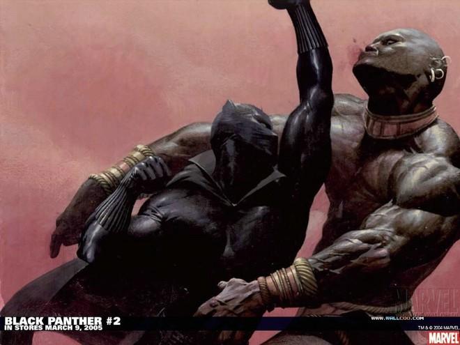 Ai cũng đang bàn tán về Black Panther, vậy chính xác siêu anh hùng đó là ai? - ảnh 6
