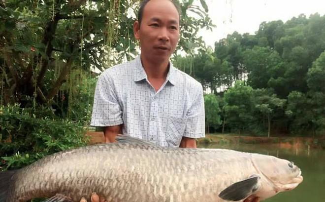 """Ông bố đam mê câu cá dọn nhà ra """"biệt thự"""" cạnh đầm ở, quyết tâm """"săn"""" cá khủng 14kg mới về nhà ăn Tết với vợ con"""