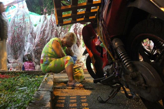 Sát tết hoa còn tồn nhiều, chủ vựa ở Sài Gòn treo biển than thở sao vào chụp hình hoài vậy - Ảnh 14.