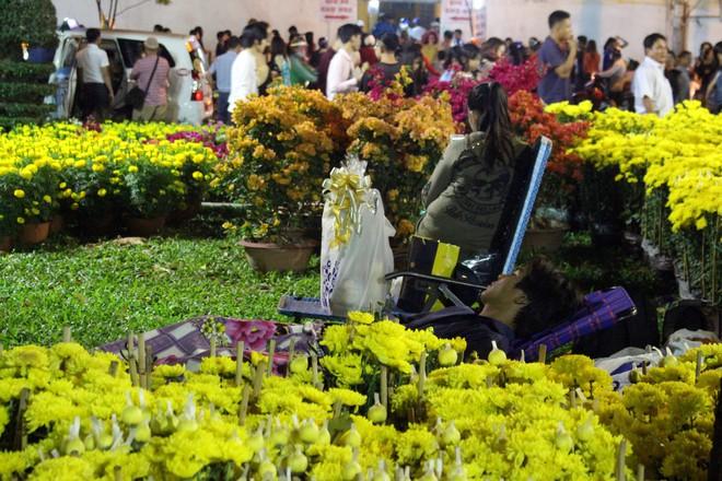 Sát tết hoa còn tồn nhiều, chủ vựa ở Sài Gòn treo biển than thở sao vào chụp hình hoài vậy - Ảnh 15.