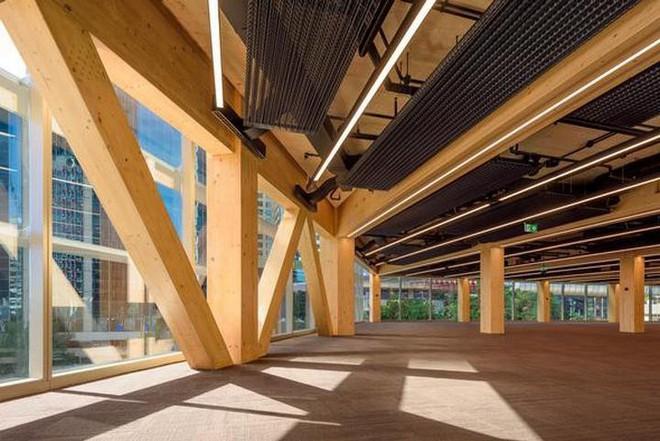 Các nhà khoa học Mỹ đã tìm ra cách biến gỗ cứng như thép - Ảnh 3.