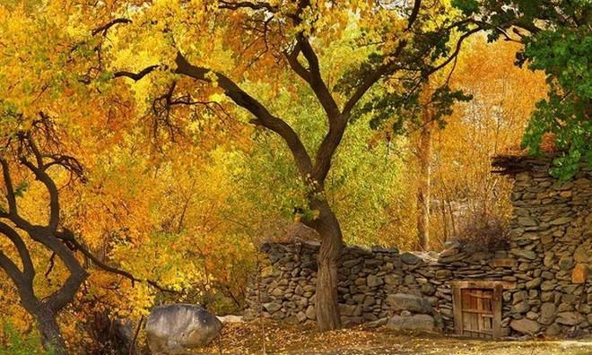 Vùng đất có con người thọ tới 150 tuổi và không bị bệnh hiểm nghèo - Ảnh 7.
