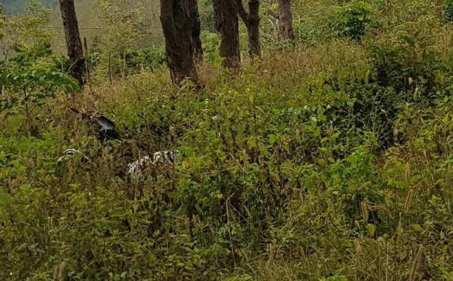 Người đàn ông tử vong cạnh xe máy trên đồi thông
