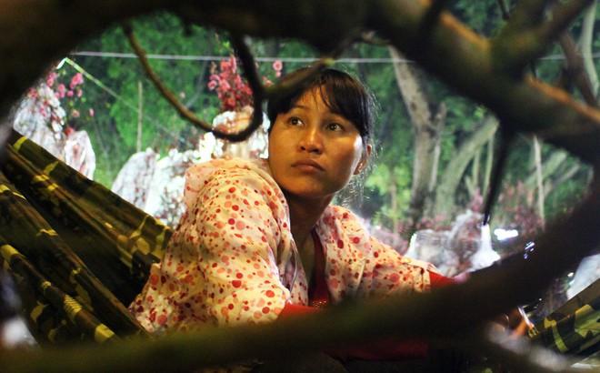 """Sát tết hoa còn tồn nhiều, chủ vựa ở Sài Gòn treo biển than thở """"sao vào chụp hình hoài vậy"""""""