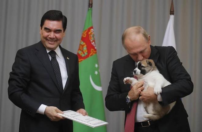 Tiết lộ bí mật thú vị về những chú chó của Tổng thống Nga Putin - Ảnh 2.