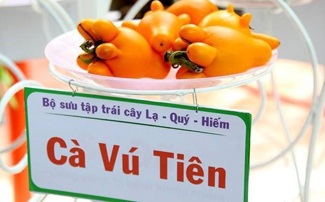 Tạp chí uy tín thế giới viết về 2 chất độc trong quả dư bán chưng Tết tràn lan ở Việt Nam