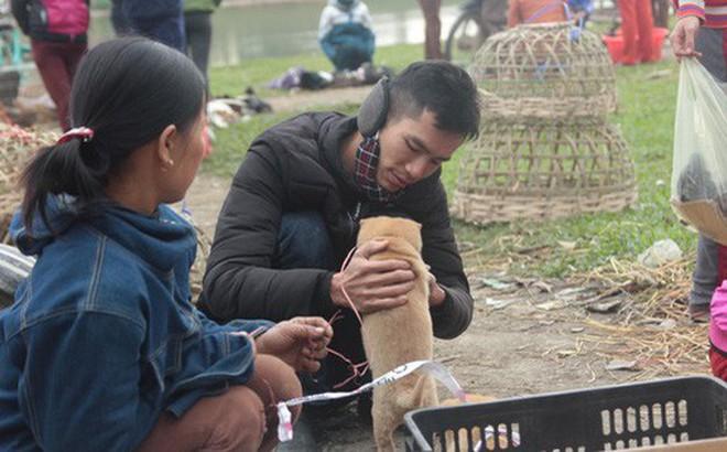 Thích thú đến chợ chó con ở Nghệ An vào ngày 29 Tết