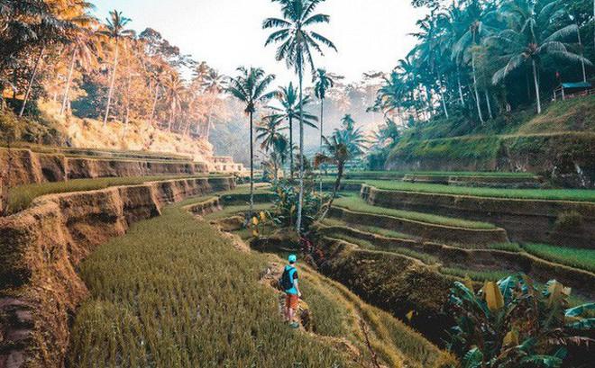 Việt Nam nổi bật trong 20 đất nước đẹp nhất thế giới