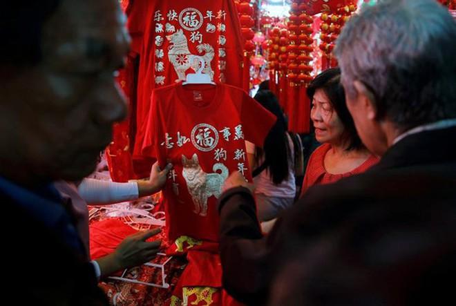 Châu Á ngập tràn sắc đỏ cùng linh vật chú chó chào Tết Nguyên Đán - ảnh 13