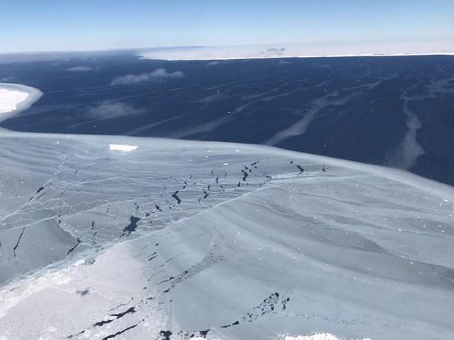 Phát hiện thế giới ẩn dưới lớp băng Nam Cực sau 120.000 năm - Ảnh 3.