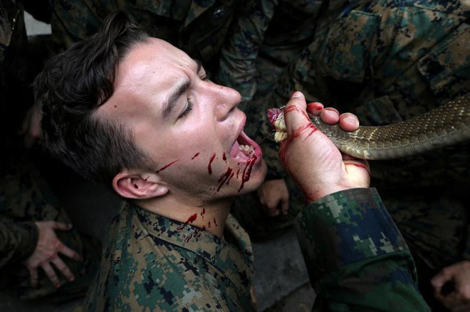 24h qua ảnh: Lính Mỹ uống máu rắn hổ mang luyện kỹ năng tồn tại - ảnh 4