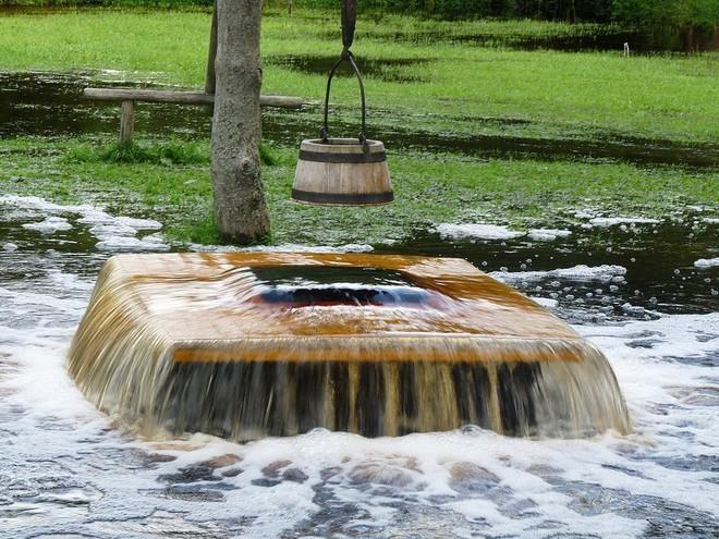 Bí ẩn hiện tượng nước chảy ra từ thân cây cổ thụ dù trời đang nắng chang chang - Ảnh 3.