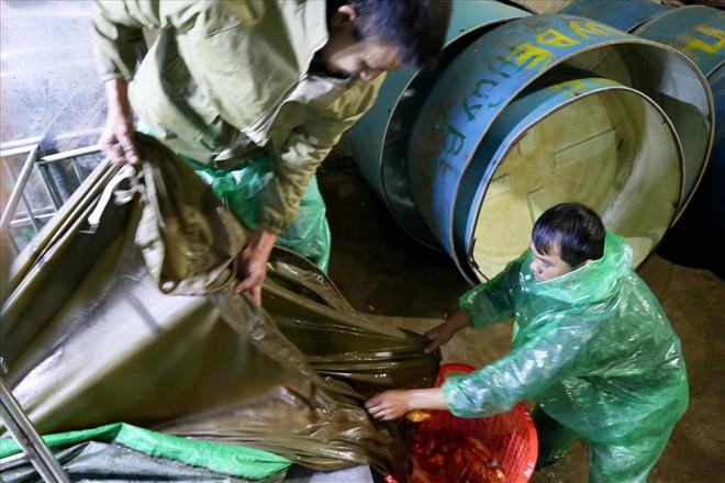 Chợ cá lớn nhất Hà Nội rực vàng trước ngày cúng ông Công ông Táo - Ảnh 2.