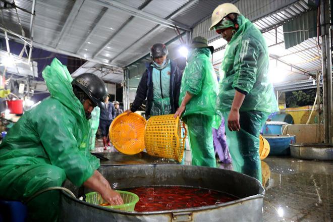 Chợ cá lớn nhất Hà Nội rực vàng trước ngày cúng ông Công ông Táo - Ảnh 8.