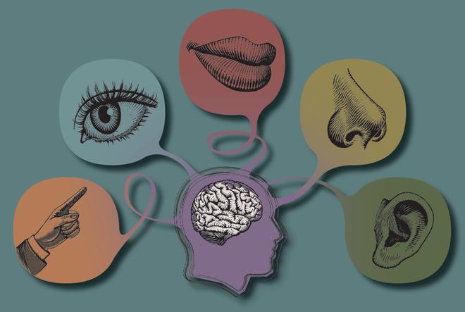 Bí ẩn khoa học: Liệu con người có tất cả bao nhiêu giác quan? - Ảnh 1.