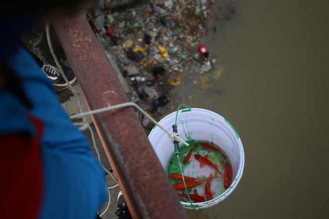 Sư thầy 10 năm giúp người dân thả cá phóng sinh ở Hồ Tây - Ảnh 6.