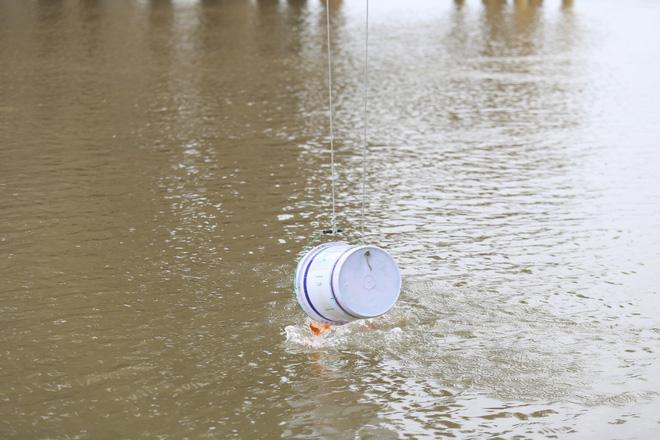 Sư thầy 10 năm giúp người dân thả cá phóng sinh ở Hồ Tây - Ảnh 4.