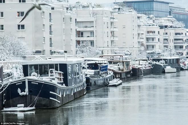 Chỉ sau một đêm, tuyết nhấn chìm Paris vào một màu trắng mộng mơ dày tới gần 18cm khiến nhiều người ngỡ ngàng 15