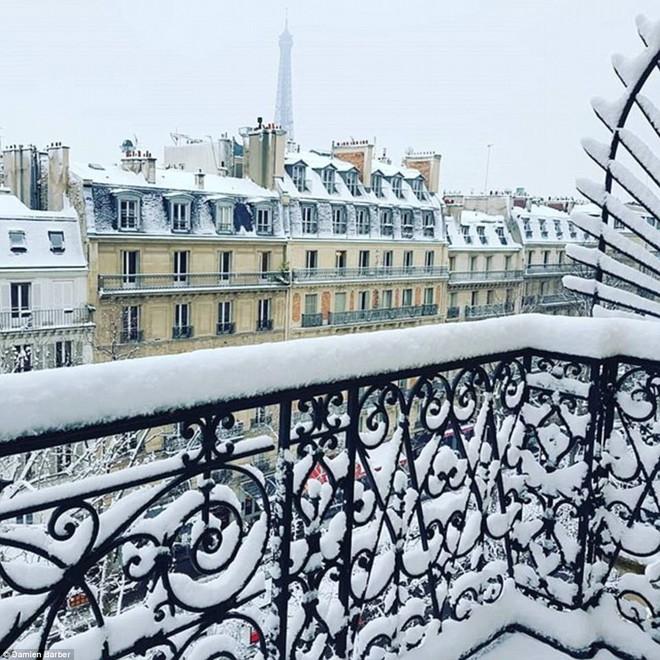Chỉ sau một đêm, tuyết nhấn chìm Paris vào một màu trắng mộng mơ dày tới gần 18cm khiến nhiều người ngỡ ngàng 4