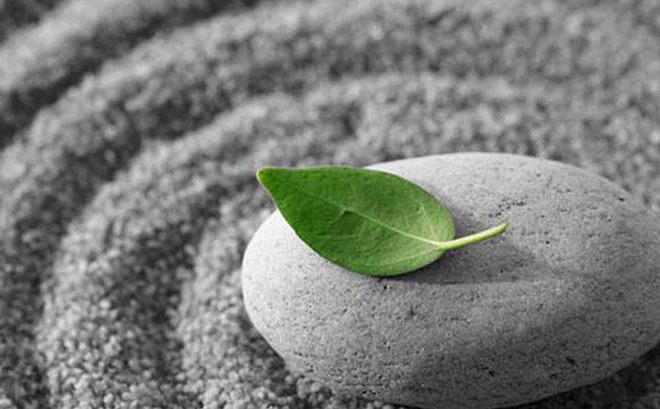 20 chân lý trong cuộc sống xuất phát từ nghịch lý