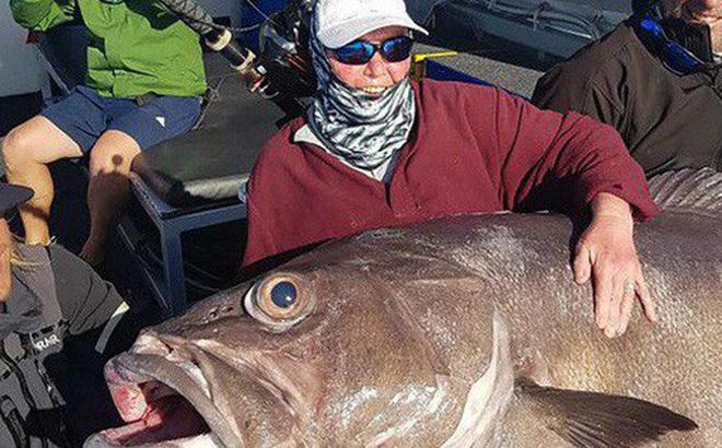 """Cụ bà 68 tuổi câu được cá """"quái vật"""" gần 130 kg"""