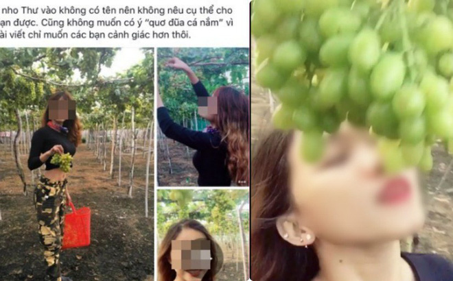 Nữ phượt thủ ngửa cổ ăn nho trên giàn, còn tố chủ vườn Ninh Thuận: Con gái chủ vườn tức giận lên tiếng!
