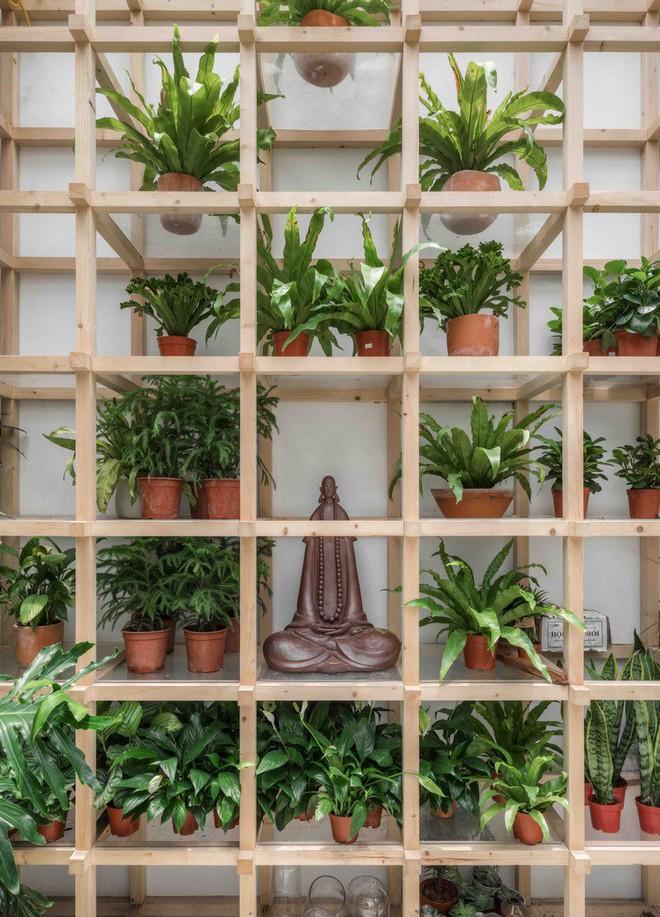 Quán cà phê Hà Nội được báo Mỹ ca ngợi như Rừng Nhiệt đới trong lòng thành phố - Ảnh 10.