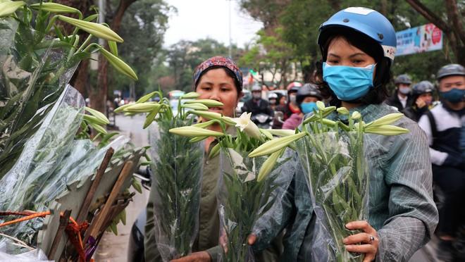 Từ vườn xuống phố, hoa loa kèn đầu mùa đội giá gấp 5-6 lần - Ảnh 2.