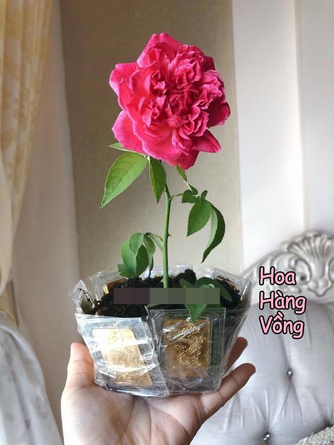 Chị em kiểm kê quà ngày 8/3: Người được tặng chùm hoa sữa, người hãnh diện khoe chỉ vàng - Ảnh 6.