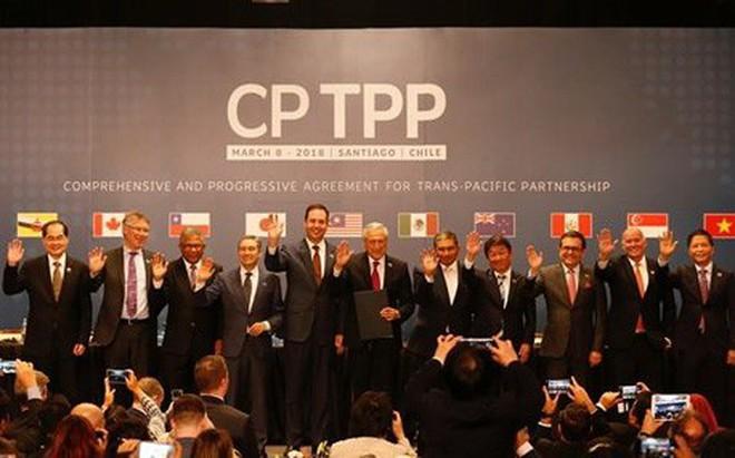 11 quốc gia chính thức ký kết CPTPP, điều gì sẽ xảy ra tiếp theo?
