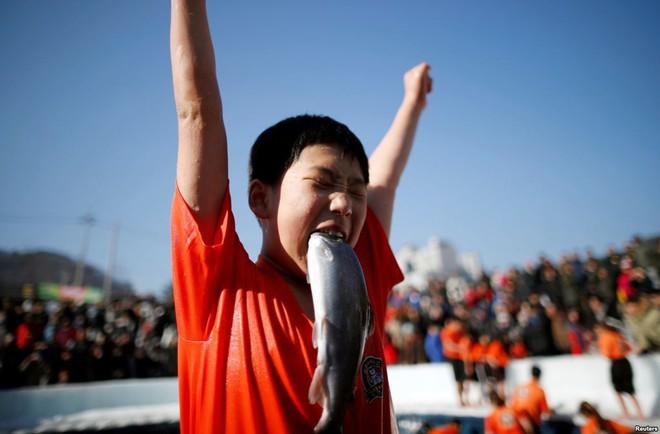 24h qua ảnh: Cậu bé Hàn Quốc vui sướng ngậm cá hồi sống trong lễ hội băng - Ảnh 4.