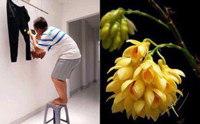 """Bức ảnh hoa lan ai nhìn cũng khen, danh tính """"phó nháy"""" và hậu trường chụp ảnh còn thú vị hơn"""